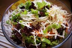 salata-anameikth